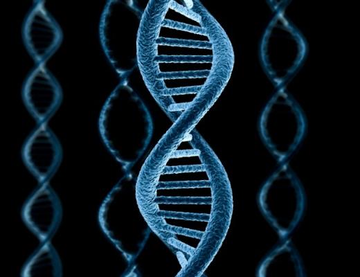 Հայտնագործություն՝ քրեագիտության ոլորտում. ԴՆԹ-ն կարելի է փոխանցել ձեռքսեղմամբ