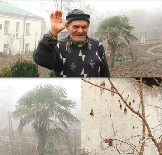 Photo of Ռոմիկ պապն իր կյանքի 1/3-րդն ապրել է կրակոցների ներքո