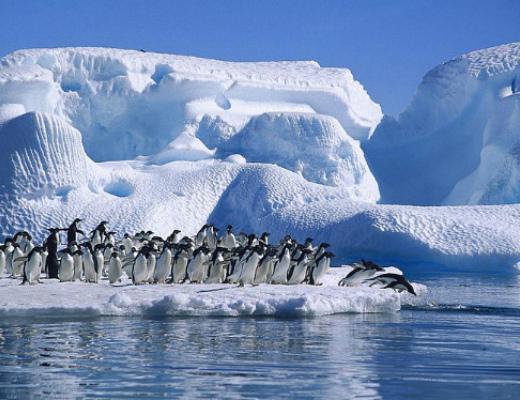 Photo of Անտարկտիդան 10 տարվա ընթացքում կորցրել է ավելի քան 100 մլրդ. տոննա սառույց