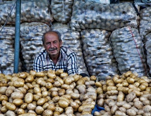 Selcuk-Market1