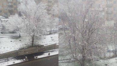 Photo of Սյունիքում ձյուն է տեղում