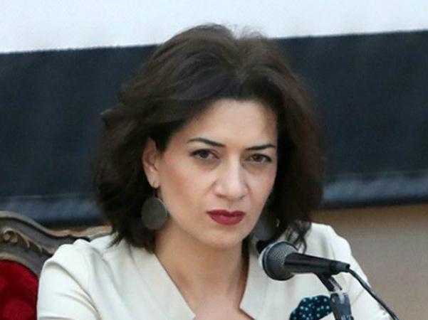 Photo of Сын бывшего высокопоставленного чиновника заказывает материалы против Анны Акопян: комментарии офиса Анны Акопян