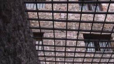 Photo of Խախտումներ «Վարդաշեն» ՔԿՀ-ում. Պաշտպանի ներկայացուցիչները մշտադիտարկում են իրականացրել  հատուկ սարքերի օգտագործմամբ