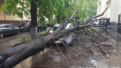 Photo of Ուժեղ քամու հետևանքով ծառն ընկել է ավտոմեքենայի վրա