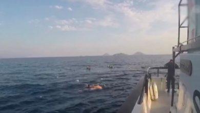 Photo of У берегов Бодрума затонуло судно с мигрантами, 12 погибших