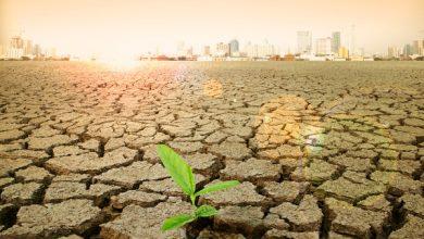 Photo of Потепление «по худшему сценарию» начнется с 2050 года – эксперты