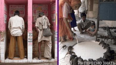 Photo of 10 фото о том, как выглядит реальная Индия. Это вам не кино…
