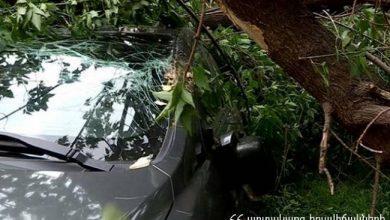 Photo of Ծառը մասամբ կոտրվել է և ընկել կայանած ավտոմեքենայի վրա. տուժածներ չկան