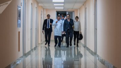 Photo of Բժիշկները պայքարում են երիտասարդ աղջկա կյանքի համար. Թորոսյանը մանրամասներ է հայտնում