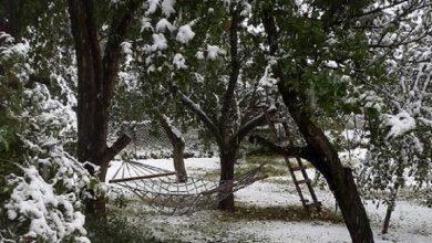 Photo of Վրաստանի Սվանեթիի շրջանում ձյուն է տեղացել. տեսանյութ