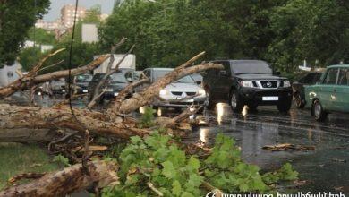 Photo of Երեւանում ուժեղ քամին ծառեր եւ ճյուղեր է կոտրել. քաղաքացիները դիմել են փրկարարների օգնությանը