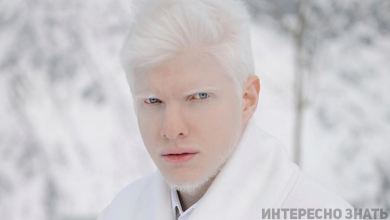 Photo of Վրացի ալբինոս մոդելը ներկայացրել է իր հմայիչ կնոջը