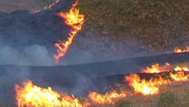 Photo of Նախիջեւանի հետ սահմանին հակառակորդի կրակոցի հետեւանքով հրդեհ է բռնկվել