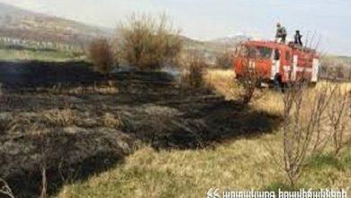 Photo of Դիմիտրով գյուղում այրվել է 10 հա խոտածածկ տարածք