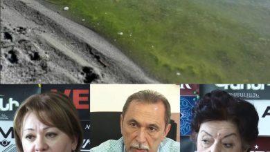 Photo of Սևանա լճի բուռն «ծաղկումը» շարունակվելու է նաև հուլիսին. կանխատեսում են մասնագետները