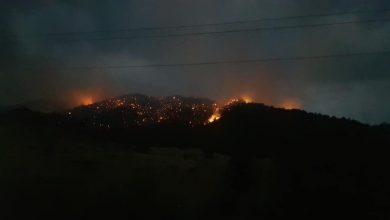 Photo of Մեղրու տարածաշրջանի «Արևիկ» ազգային պարկում 10 հեկտար գիհու անտառներ են վառվում