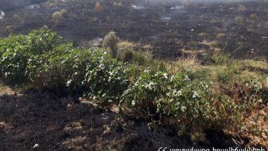 Photo of Գրանցվել է խոտածածկ տարածքներում բռնկված 90 հրդեհ. 150 հա տարածքի հրդեհները մարվել են