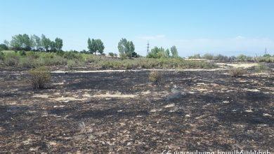 Photo of Գրանցվել է խոտածածկ տարածքներում բռնկված 47 հրդեհ. հրշեջ-փրկարարները մարել են հրդեհները՝ ընդհանուր մոտ 40 հա տարածքում
