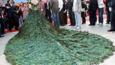 Photo of Զգեստներ, որոնք մի ամբողջ կարողություն արժեն, սակայն չեն համապատասխանում իրենց գնին