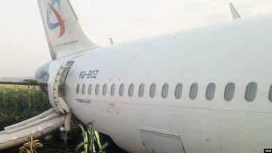 Photo of В пассажирский самолет на вылете из Москвы попала стая птиц. Он сел на поле, есть раненые