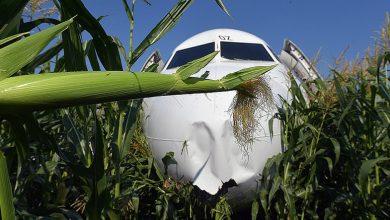 Photo of Վթարային վայրէջք կատարած Մոսկվա-Սիմֆերոպոլ ինքնաթիռի ուղևորների մեջ եղել են նաև հայեր