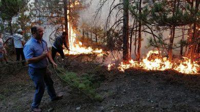 Photo of Թուրքիայում անտառային հրդեհները շարունակվում են