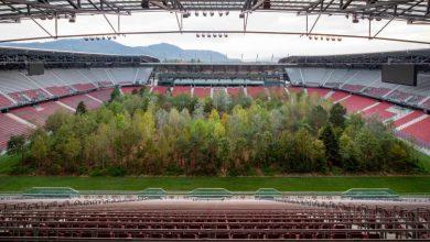 Photo of Ավստրիայի մարզադաշտերից մեկում անտառ է աճում