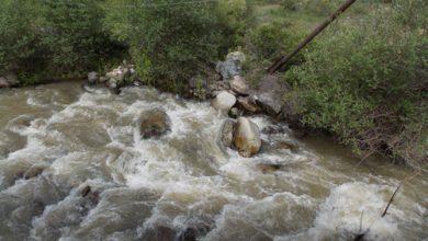 Photo of Ողջի գետն աղտոտելու վերաբերյալ վնասի նախնական հաշվարկն ուղարկվել է Սյունիքի մարզի դատախազություն