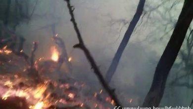 Photo of «Հայանտառ» ՊՈԱԿ-ի Իջևանի անտառտնտեսության անտառածածկ տարածքում այրվում են մոտ 1 հա բուսածածկույթ և ծառեր