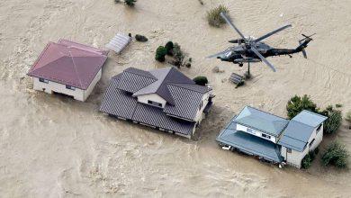 Photo of СМИ: число жертв тайфуна «Хагибис» в Японии увеличилось до 25