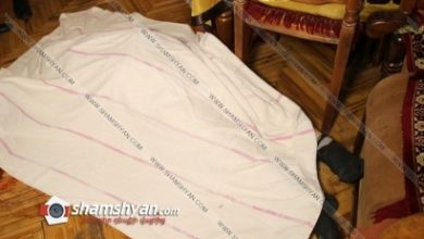 Photo of Ոստիկանները բացահայտել են 64-ամյա կնոջ դաժան սպանությունը. Կասկածյալը ՊԵԿ փոխնախագահ Մաշադյանի եղբայրն է. shamshyan.com