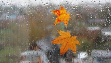 Photo of Հայաստանում եղանակը կցրտի մինչև 8 աստիճանով, սպասվում է անձրև և ամպրոպ