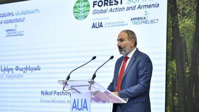Photo of ՀՀ կառավարությունն ունի հստակ հանձնառություն և քաղաքական կամք՝ պահպանելու, վերականգնելու և ընդլայնելու անտառները. վարչապետ