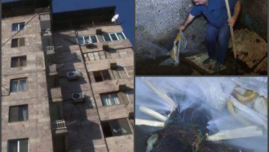 Photo of «Հայաստանում իրավիճակ փոխվեց, «Վեոլիա ջրում» բան չփոխվեց». բարձրահարկ շենքի հիմքերը թուլանում են