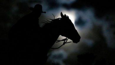 Photo of Արտառոց դեպք Բավրայի սահմանակետում. անհայտ անձը ձիով խախտել է ՀՀ պետական սահմանը. ձին առանց ձիավորի ետ է վերադարձել