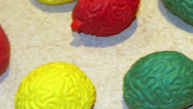 Photo of Ученые: мозг человека отрицает смерть