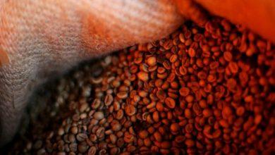 Photo of Швейцария хранит запас кофе на случай войны. И не может от него отказаться