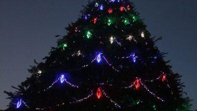 Photo of Դեկտեմբերի 20-ին կվառվեն Գյումրի քաղաքի գլխավոր տոնածառի լույսերը