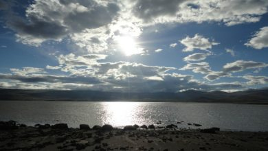 Photo of Ձերբակալվել է «Արփի լիճ ազգային պարկ» ՊՈԱԿ-ի տնօրենի ժամանակավոր պաշտոնակատարը