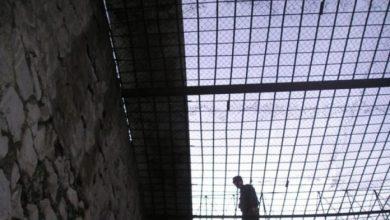 Photo of Դատախազությունը դատապարտյալների ձեռքից «խլում է» ձեռք բերած խրախուսանքները. forrights.am
