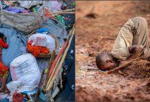 Photo of Անողոք ու դաժան. ինչպես է վարվել մարդը Երկիր մոլորակի հետ