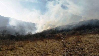 Photo of Հայ-վրացական սահմանին հրդեհաշիջման աշխատանքները դադարեցվել են