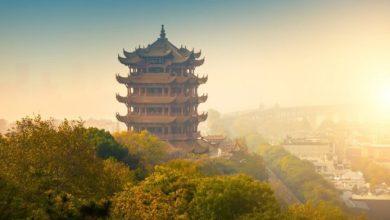Photo of Загадочный китайский вирус: есть ли повод для беспокойства?
