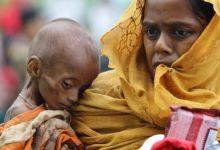 Photo of Суд ООН обязал Мьянму защитить рохинджа от геноцида. За них заступались на Кавказе