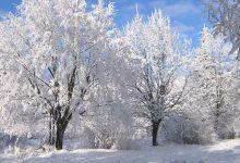 Photo of Лютая зима: в Армении похолодает до 27 градусов мороза