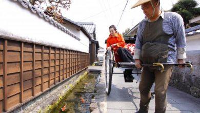 Photo of Японский город, в котором вода настолько чистая, что в водостоках живут карпы