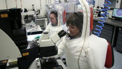 Photo of Ученые: вакцина от атипичной пневмонии может остановить новый коронавирус