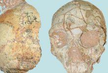 Photo of Հունաստանում հայտնաբերված հին մարդկային գանգի տարիքը գնահատվում էր 200 հազար տարի