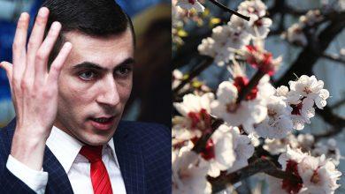 Photo of От 25 градусов тепла до 10 градусов мороза: Суренян спрогнозировал «сумасшедший март» в Армении