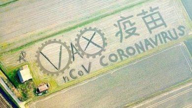 Photo of Իտալացի ֆերմերը տրակտորի միջոցով իր դաշտում պատկերել է կորոնավիրուսը